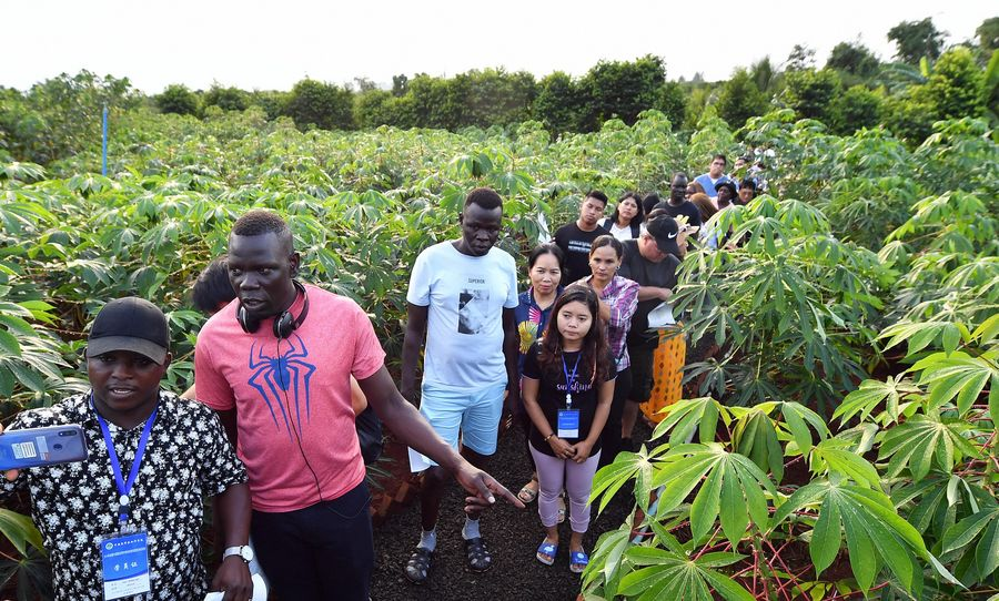 Xinhua Headlines: China, Africa join for broader agricultural cooperation