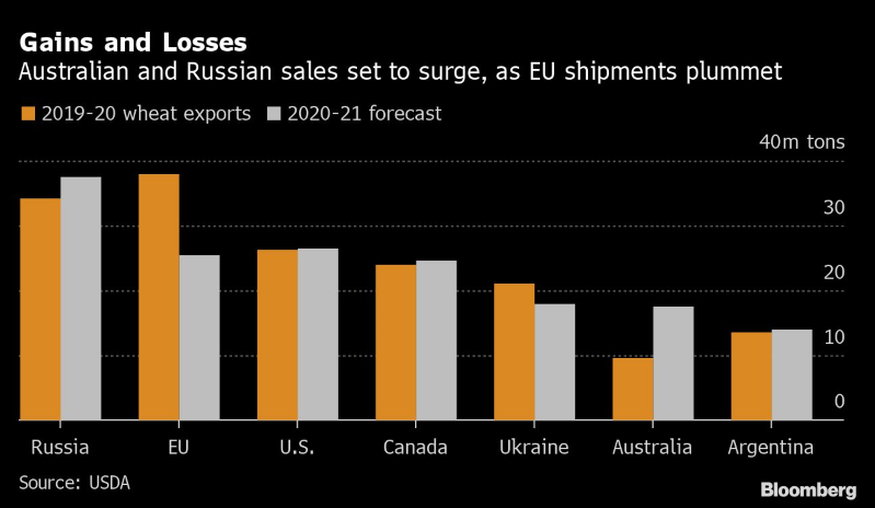 Drought and Rain Are Reshaping Global Grain Trade Routes